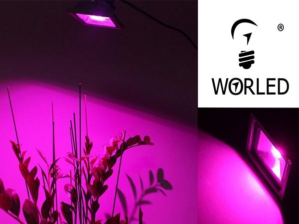 Proyector led cultivo 50w con espectro completo para crecimiento floracion interior worled - Cultivo interior led ...
